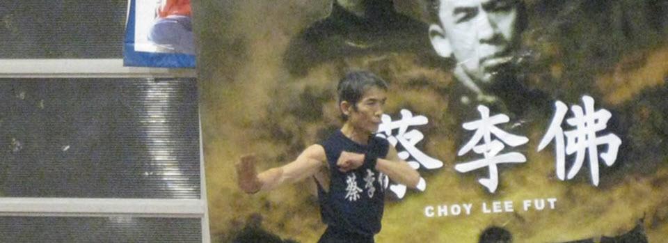 Gran Maestro Chen Yong Fa - 2009